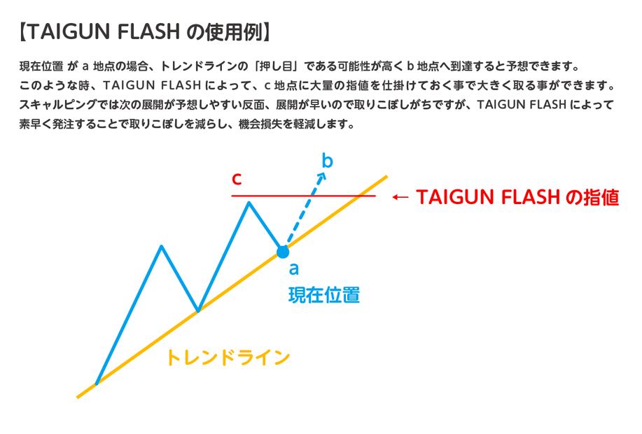 taigun_flash_use.png